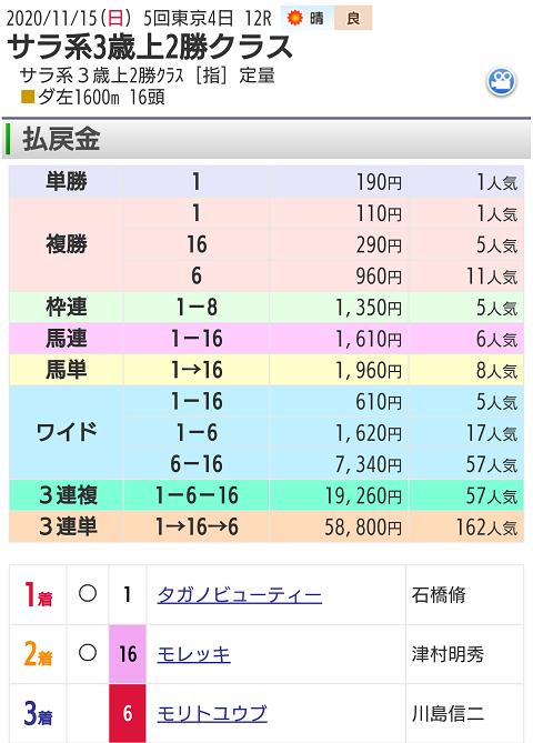 11月15日東京競馬場最終12レース結果