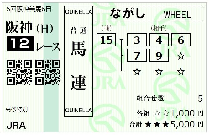 12月20日阪神最終レース馬連馬券1