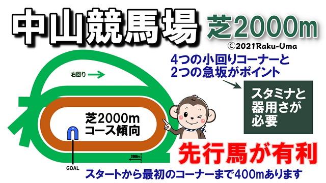 中山競馬場芝2000mコース