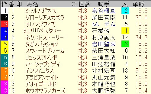 出馬表【東京11レース】