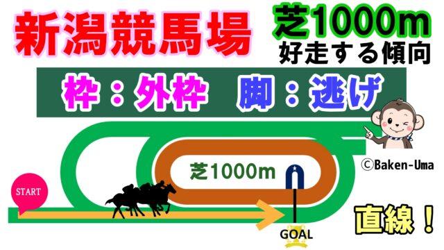 新潟競馬場芝1000m