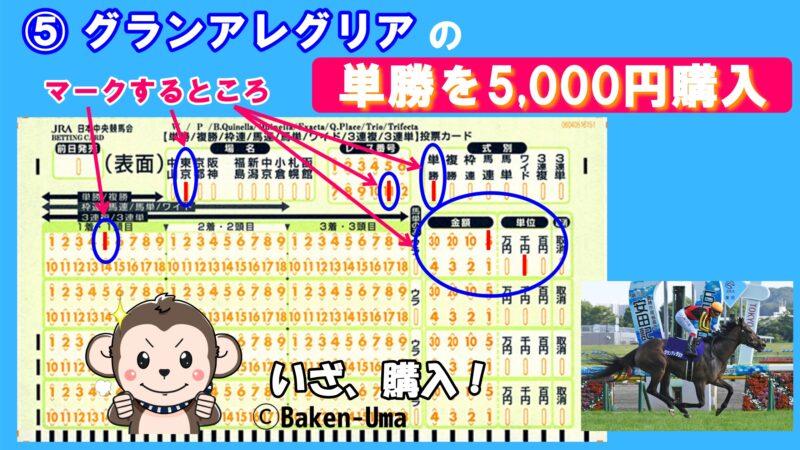 単勝を5,000円購入